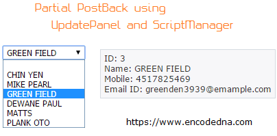 Asp Net – How to do a Partial PostBack using UpdatePanel and