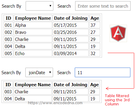 How to Implement a Search Filter on an HTML Table using