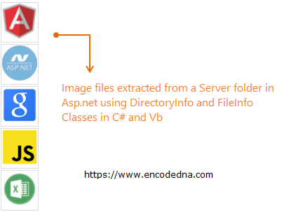 Extract Image Files from Server Folder using Asp.Net