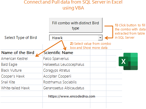 Connect and Pull data from SQL Server in Excel using VBA