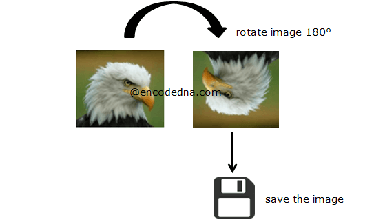 Rotate and Save image using JavaScript and Canvas
