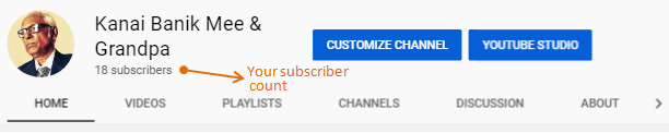 Your YouTube Subscriber Count